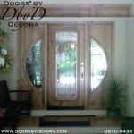 contemporary door and sidelites