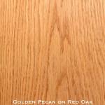 red oak door stained with golden pecan stain