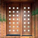 modern 21-lite wood door